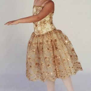 Beautiful Gold sequins costume dress